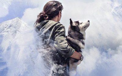 El hombre es un lobo para el hombre